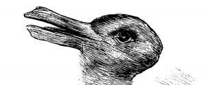 Haas of eend