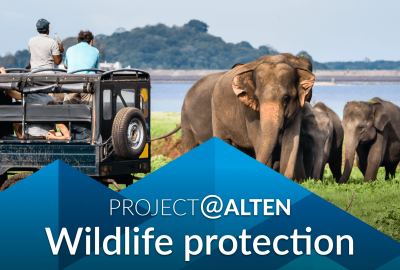 Project@ALTEN: Wildlife protection